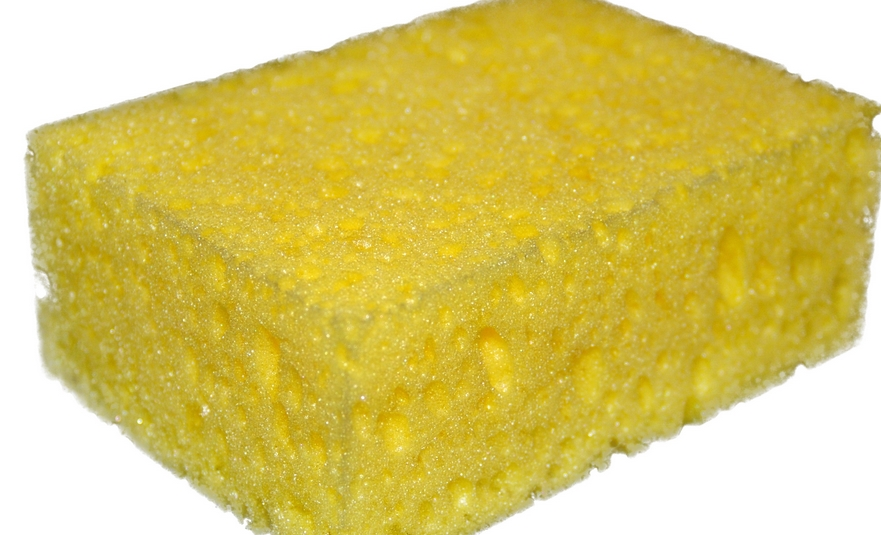 Best Sponge Black Friday Sale