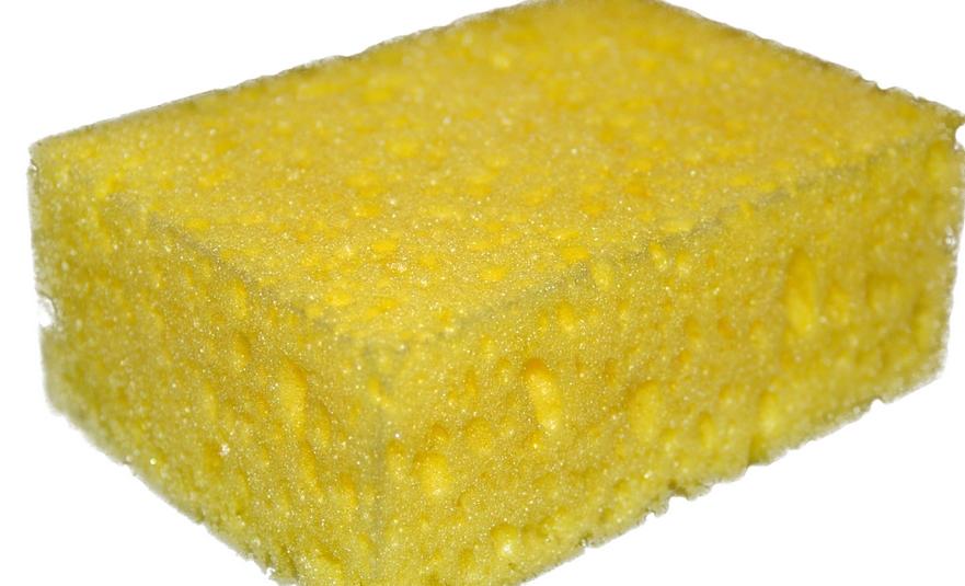 Best Sponge for Sale