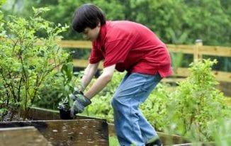 Best Gardening Gloves Black Friday Sale